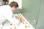 Pino prepares his Lobster Medallions in New York